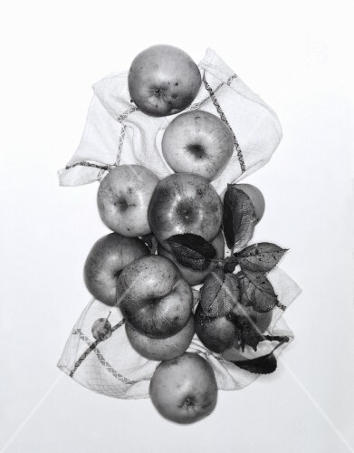 Apples with leaves on a tea towel