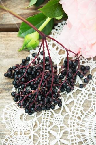 Elderberries on a crocheted doily