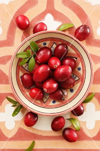Cranberries in a ceramic bowl