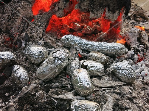 Baked potatoes in the embers of a campfire