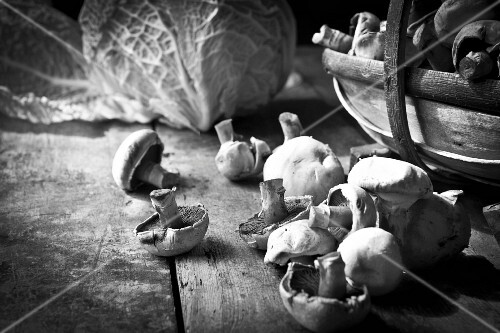 Field mushrooms in a wooden basket with a savoy cabbage in the background (black and white image)