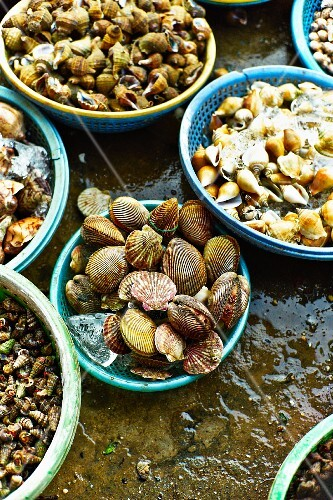 Various mussels and snails at a market in Saigon (Vietnam)