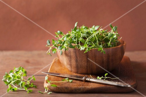 Thyme in a wooden bowl
