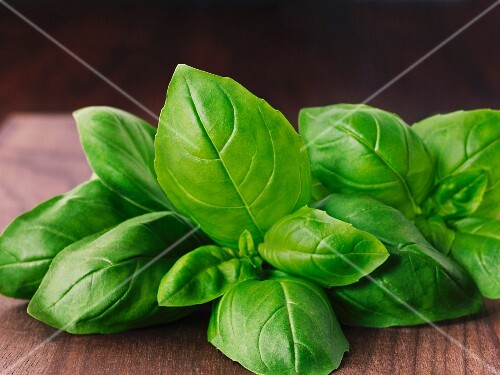 Fresh basil on a wooden board