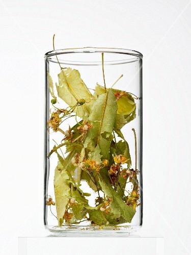 Lime flowers and leaves in a glass container