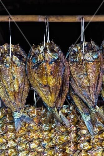 Dried fish (Laos)