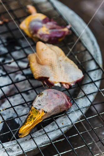 Duck being grilled on a barbecue (Laos)
