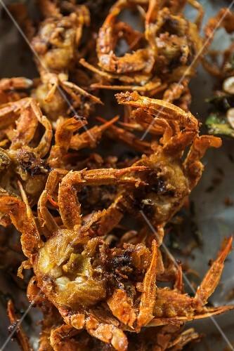 Fried crabs at a market (Krabi, Thailand)