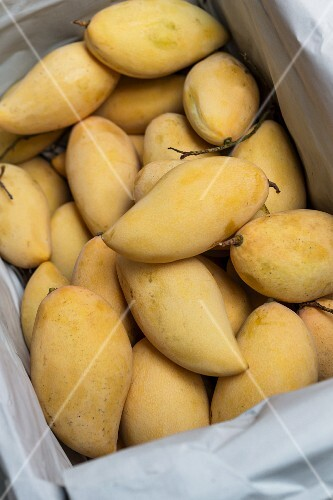 A crate of Thai mangos