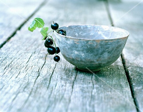 Blackcurrants on the edge of a bowl