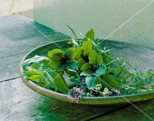 Fresh herbs in a flat dish