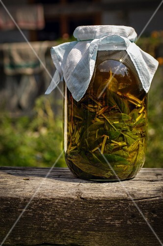 Basil preserved in oil from Burgenland, Austria