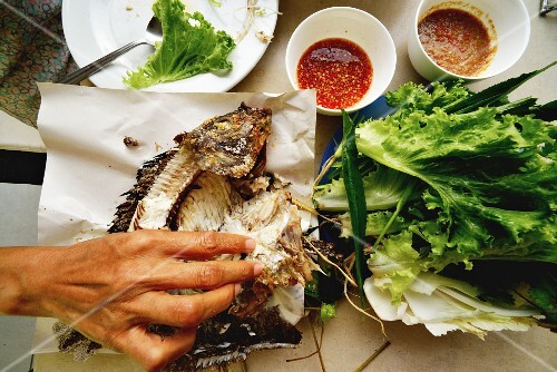 Grilled tilapia with lettuce and sauces (Thailand)