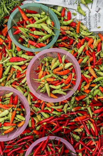 Red and green chilli peppers at a market in Vientiane, Laos