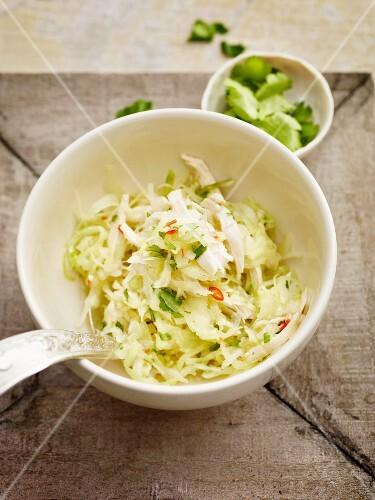 Oriental cabbage salad with chicken