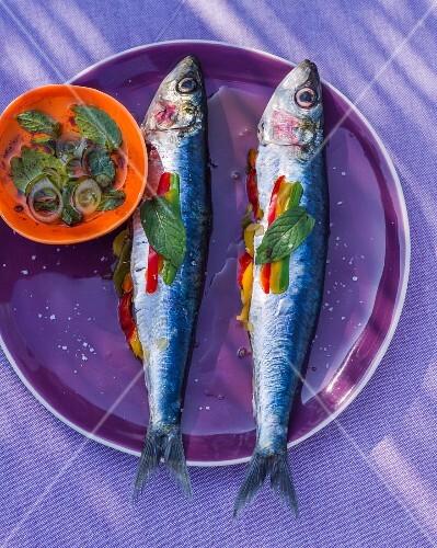 Pepper sardines with a herb vinaigrette