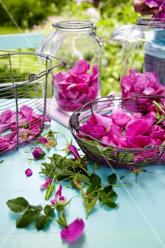 Wild roses in baskets and jar on a table outside