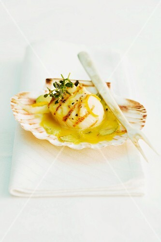Grilled scallops in a lemon and saffron sauce