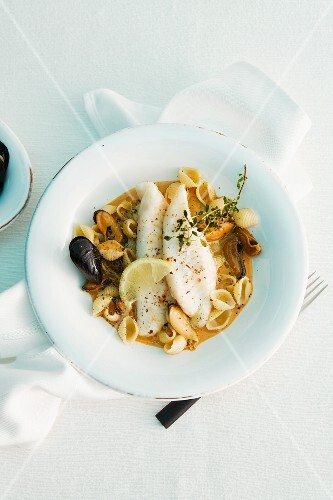 John Dory in a fish stew with mussels