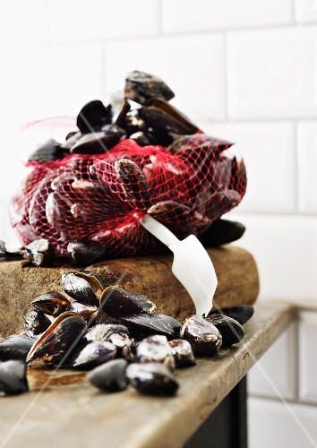 Mussels in a net