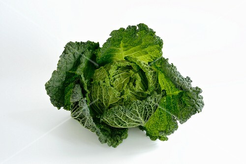 A savoy cabbage against a white background