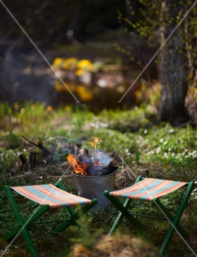 Spring picnic in forest