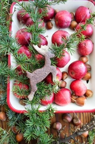 Red apples and reindeer-shaped biscuit in baking dish (at Christmas)