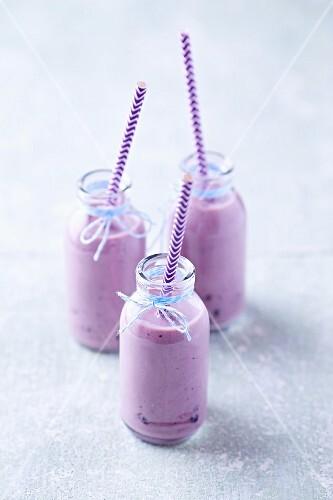 Three blueberry yoghurt smoothies in glass bottles