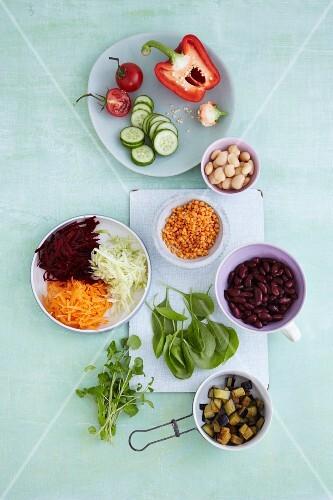 Various ingredients for vegetable salads
