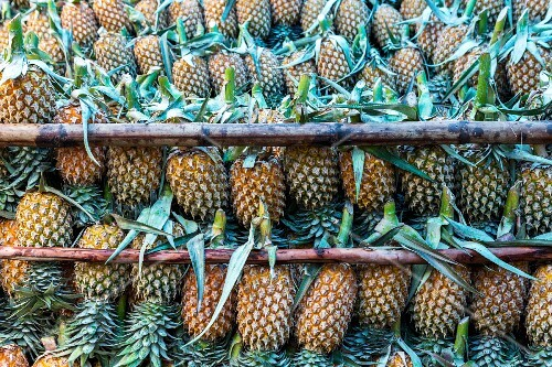 A stack of pineapples
