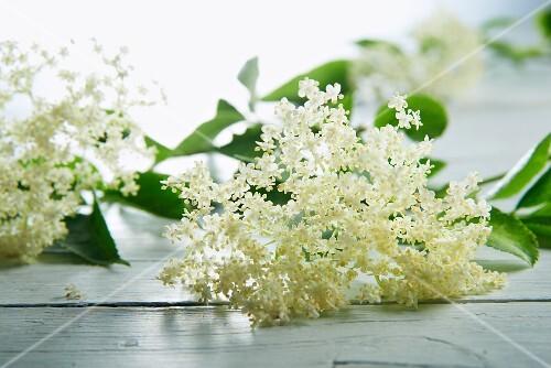 Elderflowers are wooden table