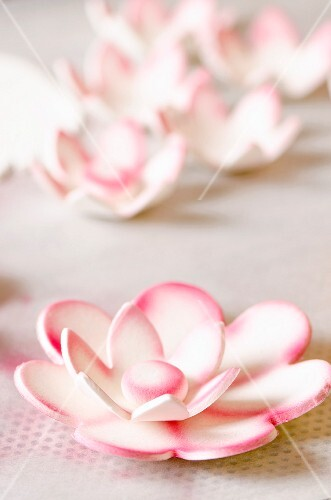 Handmade sugar flowers
