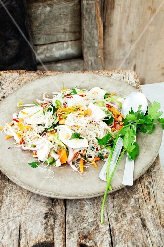 Glass noodle salad with chicken and vegetables (Thailand)
