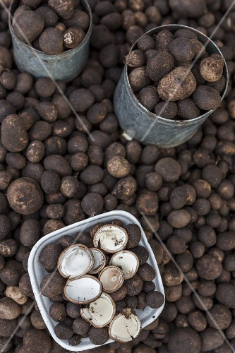 Hed Pop (Thai truffles)