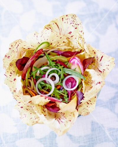 Radicchio salad with rocket and onions (seen from above)