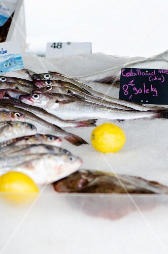 Cod at a fish market