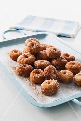 Mini doughnuts with cinnamon and sugar