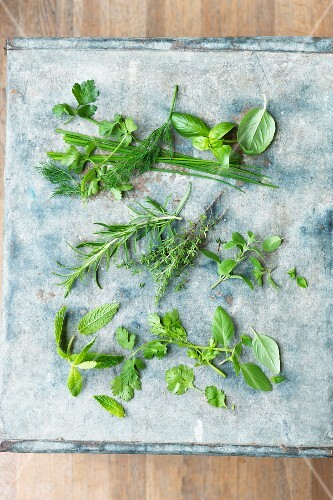 Various fresh kitchen herbs on a stone platter (seen from above)