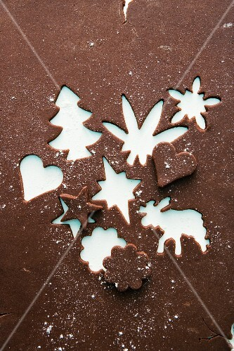 Chocolate biscuit dough with cut-out biscuits