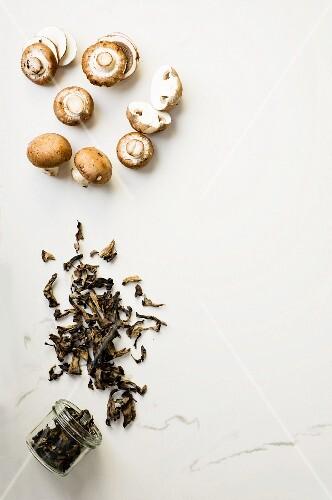 Portobello mushrooms and dried black chanterelles