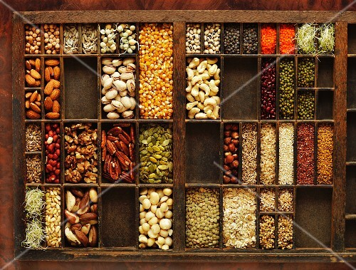 A seedling tray filled with various nuts, legumes and seeds