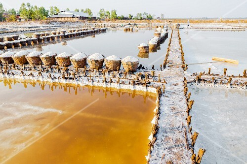 Salt fields in the Loei province (North-East Thailand)