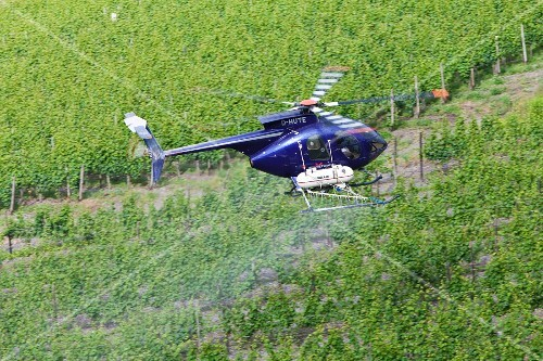 A helicopter spraying a vineyard, Rhineland Palatinate, Germany