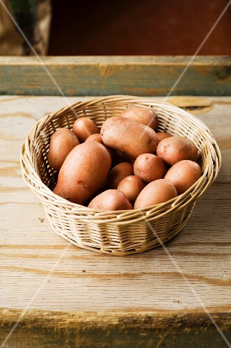 A basket of red-skined Celine potatoes