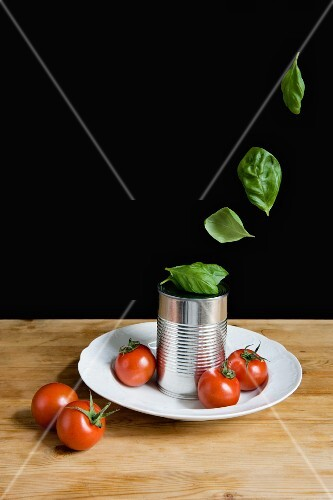 Tomatoes and a tin can on a plate with fresh basil leaves floating above them