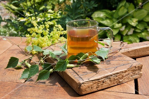 Birch leaf tea