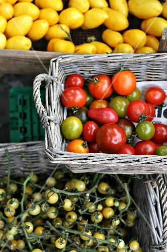 Various types of tomatoes at a market
