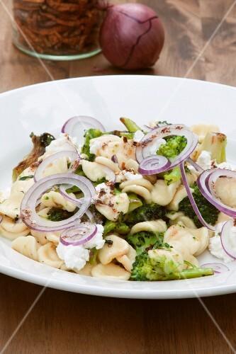 Orecchiette pasta with broccoli and red onions, close-up