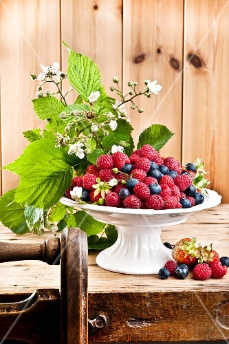 An arrangement of raspberries and blueberries in a bowl