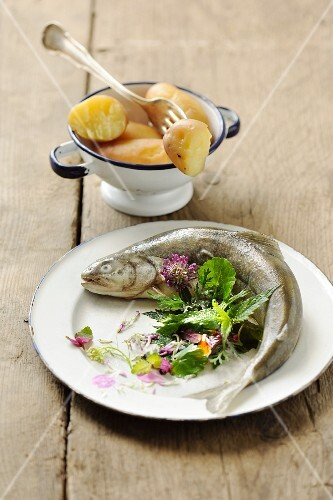Char with wild herbs and new potatoes